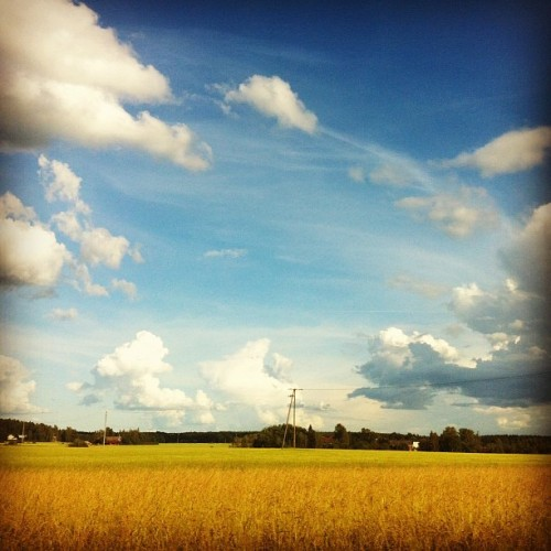 summer at my parents place. (Taken with Instagram at Maaseutuoppilaitos Livia)