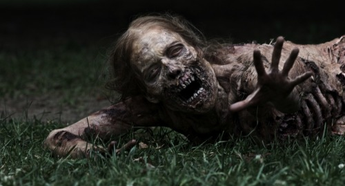 vgd-oficial:  The Walking Dead…