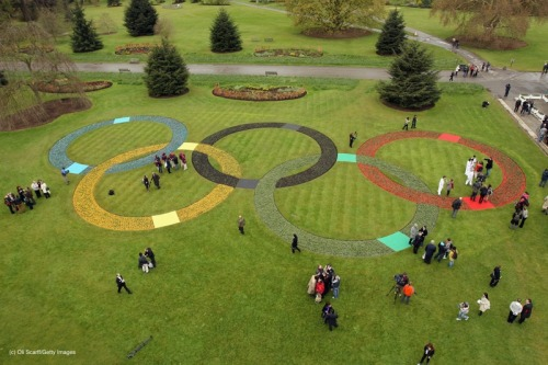 olympics:  Olympic officials and the media admire a large set of Olympic Rings, created with at least 20,000 flowers and plants in Kew Gardens