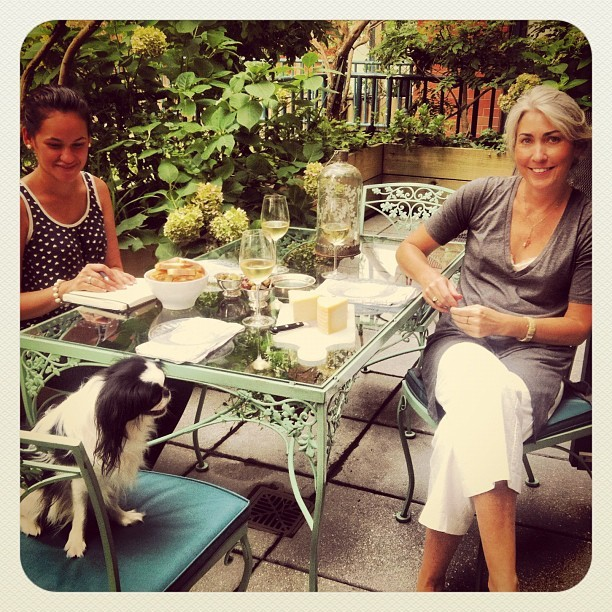 Look at author Julie Muszynski here with Facey on a nice day in NYC #japanesechin #woof  www.henleywoofntails.com