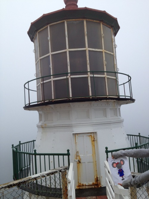 Mimi in front of the Point Reyes Lighthouse. What a foggy day!