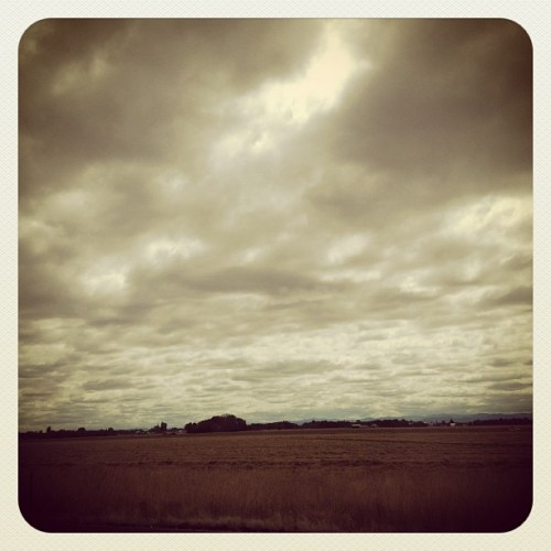 Overcast (Taken with Instagram)