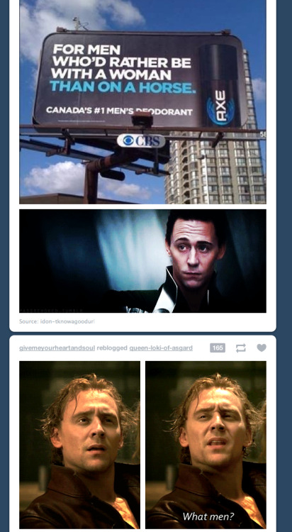 saranghae-sh:  whovian-from-whoville:  My dash is perfect.  OH. MY. GOD. WHAT. IN. HELL. IS. THIS!