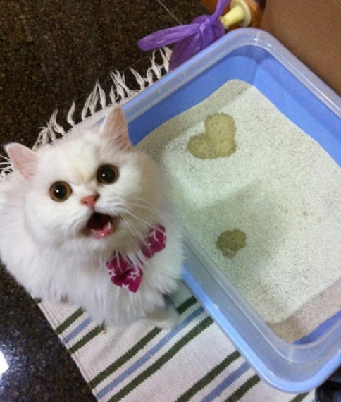 "Look, mom, I made you a ""I heart you"" message!"