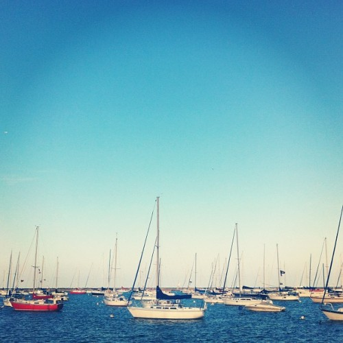 Full Harbor. #chicago #sailing #CYCRTM (Taken with Instagram at Chicago Yacht Club)