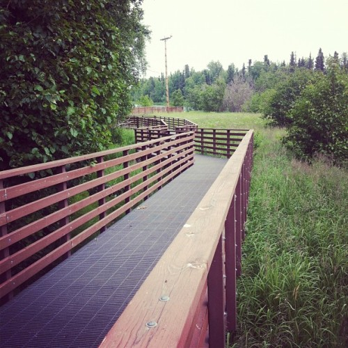 To the river! (Taken with Instagram at Soldotna Alaska)