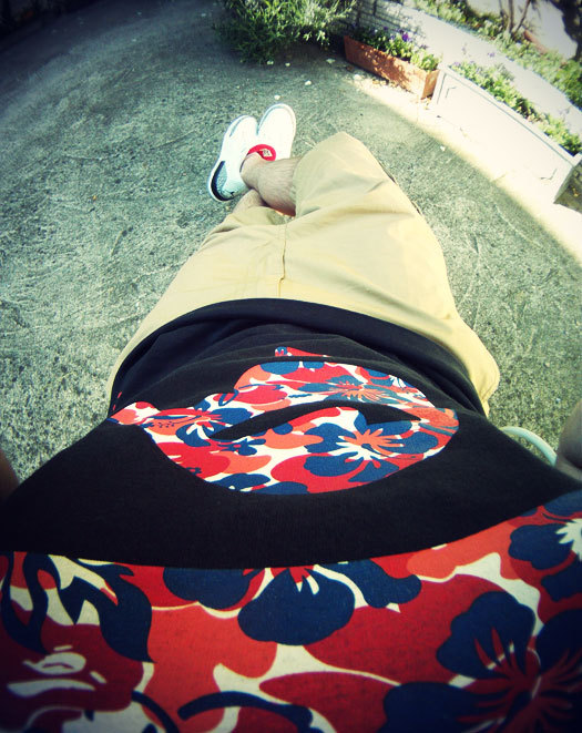 Sun bathing ape, backyard Chillin'