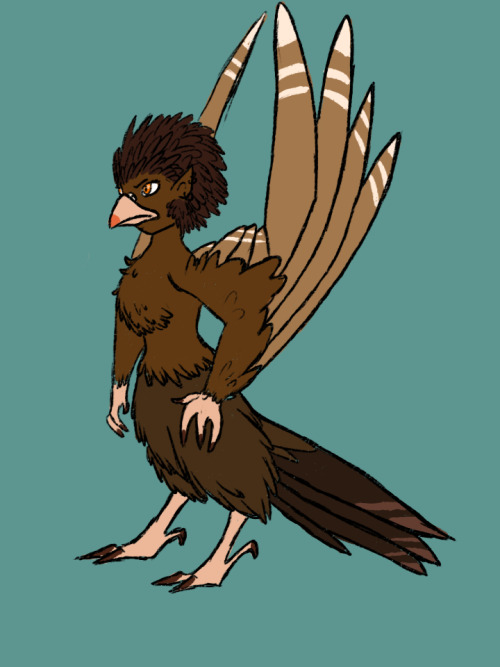 Monster girl challenge- day 1 Harpy. Today I have learned that I have forgotten how to draw proper wings and that I know nothing about how to draw tail-feathers.