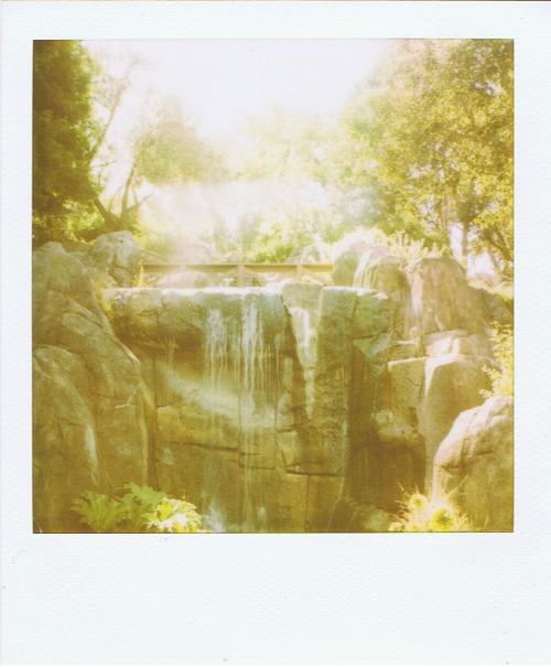 polaroidgang:  Don't go chasing waterfalls.