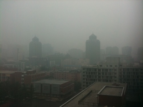 21 July 2012 at 12PM AQI : 343 : Hazardous Rain in forecast. High humidity + pollution = I'm staying indoors today.
