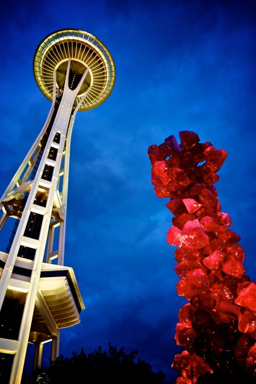 View of the Space Needle from Chihuly Garden.