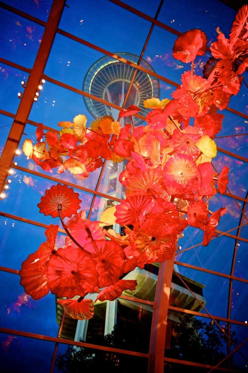 Space Needle hangs above the Chihuly Garden.