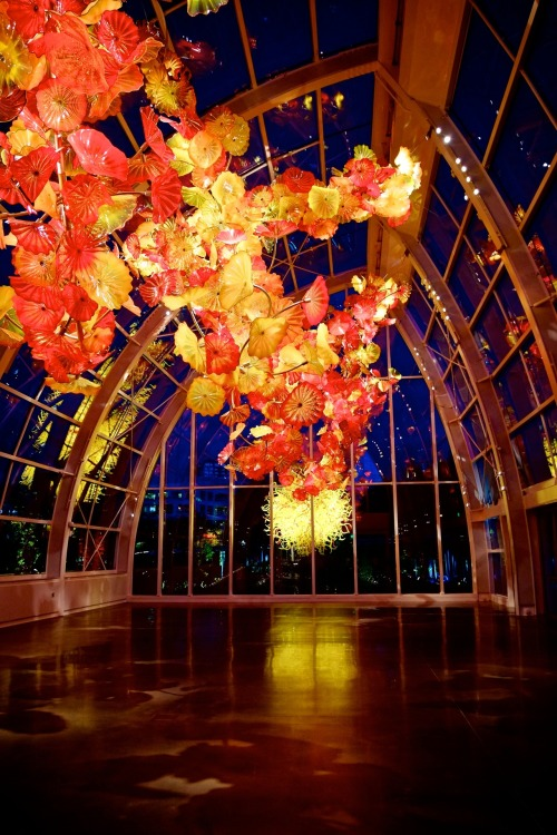 The Chihuly Garden just opened up recently, I must say it is one of the most incredible places I have ever been to. We get to see a lot of the man's work around Seattle and Washington State. For most people, they see his work inside the lobby of the Bellagio Hotel in Las Vegas. But the lighting and the overall ambiance is simply magical. But please visit around and after the sun sets.