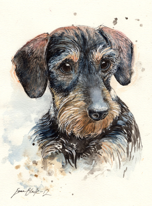 Heres another commissioned portrait finished off a couple of days ago.Ink and Watercolour, A4, 2012.