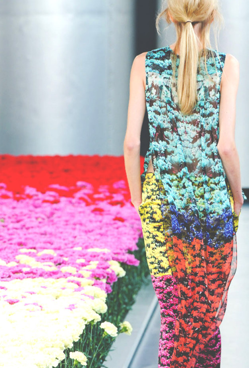 somethingvain:  mary katrantzou s/s 2012 rtw, details