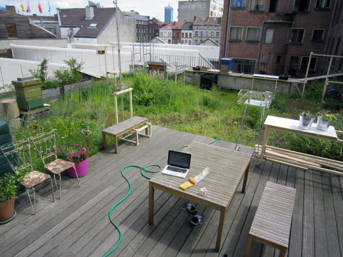 OKNO rooftop garden. 3 bee hives, one with temperature and humidity sensors, and infrared camera for closer observation.