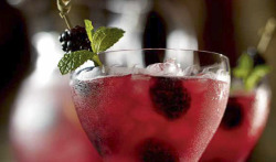 Blackberry and Cassis Fizz Serves 8 For the purée 100g blackberries100g blackcurrants75g caster sugar1 tbsp waterFor the fizz Plenty of ice240ml vodka150g blackberries150ml of the purée150ml gomme syrup½ lemon, sliced60ml lemon juice800ml soda water 8 sprigs of mint Heat the berries, sugar and water in a pan over a medium heat, stirring frequently. Once the mixture starts to boil, turn down the heat and cook for a further 10 minutes. Allow it to cool slightly, then sieve, discarding the pulp and reserving the purée. The purée can be made up to 3 days in advance. Keep refrigerated. Fill a large jug with ice, and pour in the vodka. Add 100g of the blackberries as well as the purée, gomme syrup, lemon slices and lemon juice, and top with soda water. Garnish with the remaining 50g of blackberries and a sprig of mint, and serve immediately.