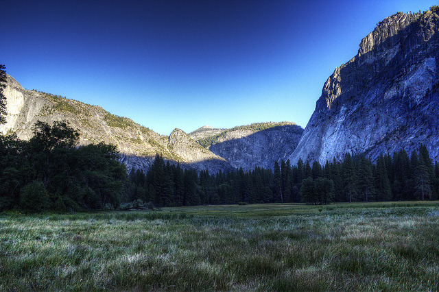 Yosemite Valley Meadow on Flickr.