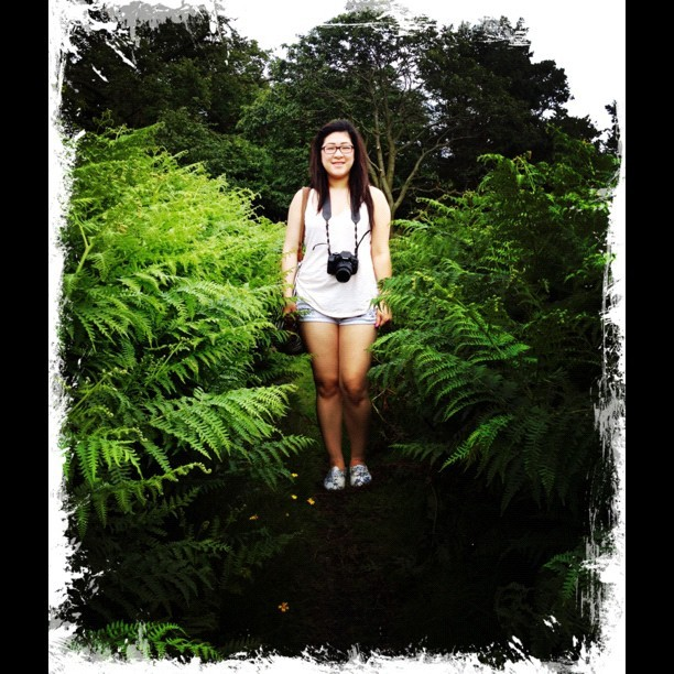 From our walk earlier. #foreveradork #me #self #foliage #nature #green #bracken #leicester #uk #summer #tree  (Taken with Instagram)