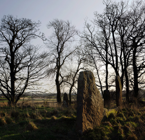myhistoryblog:  sunhoney stone circle by stusmith_uk on Flickr.