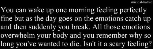 suicidal-hatred:  Becoming everyday..