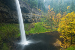 Silver Falls - Fall 2007 by Jesse Estes on Flickr.