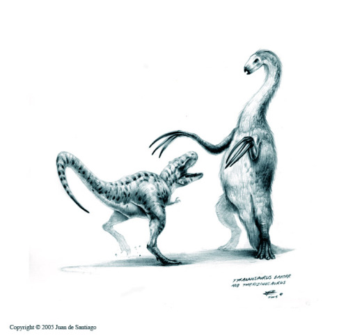 somuchscience:  paleoillustration:  A Therizinosaurus defending itself from an attacking Tyrannosaurus bataar, by Juan de Santiago   Therizinosaurus was actually a freaky theropod. No one knows why they had such strange claws, or why they were so freakishly huge, or what they ate, or how they ate, or how they coped with their depressingly negative body image… What odd balls.  No one knows? I call shenanigans. (I mean sure, no one really KNOWS anything in paleontology, but that's not the point.) The point is this guy probably ate up some plants, used it's claws to pull delicious branches into reach just like giant sloths. So yeah, it's odd, but it's about as odd as giant sloths, so at least it's in good company.  Also, this drawing is awesome. No offense intended in my critique of the accompanying text. :-D