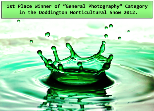 "Winning photo of the ""General Photography"" category at the Doddington Horticultural Show 2012."