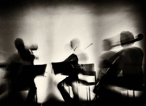 Waves Of Music © Mirela Momanu