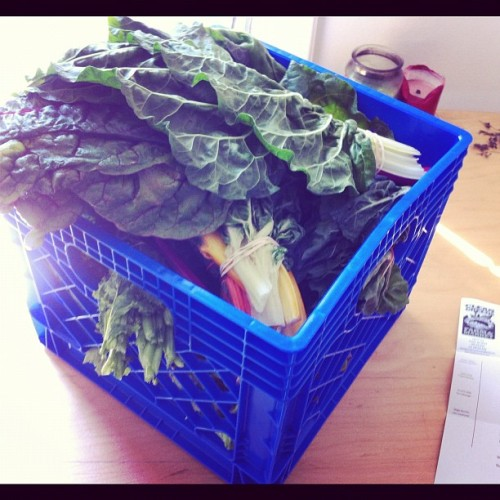 The CSA bike delivery just came by!! #cleangreens #seattle #csa #veg (Taken with Instagram)