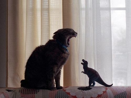 tastefullyoffensive:  Cat vs. T-Rex[via]