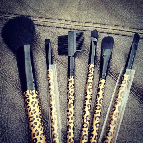 airmanspinup:  I have these brushes!
