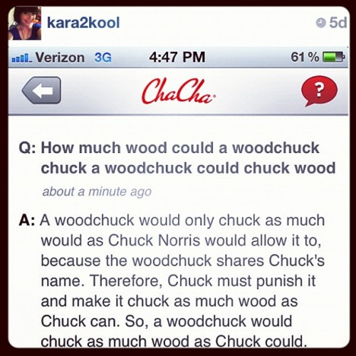 This is a valuable life lesson! #trivia #woodchuck #chucknorris #funny #humor #question #answer #screenshot #app #chacha #picoftheday #picadayjuly #clubsocial #dailyedit #fact #joke #lol (Taken with Instagram)