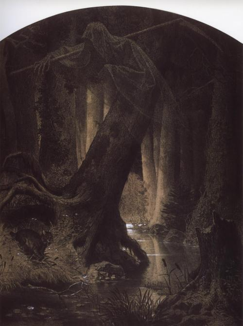 grimogretricks:   (Arthur Grottger, Great forest, 1864)  Wow, creepy, this is the kind of illustration I would've stared at as a child, both fascinated and frightened.