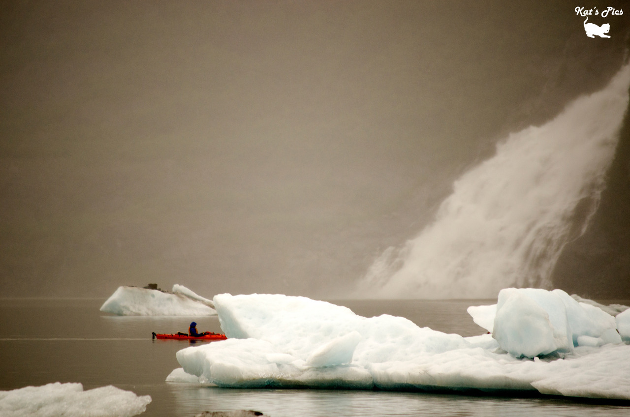 Kayaking Among Glaciers on Flickr. http://www.katheryns-gallery.com