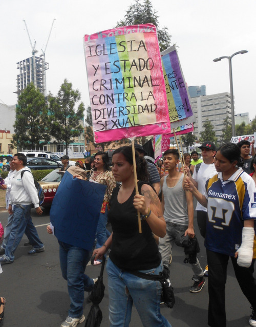 "[Image: Photo from a pride march in Mexico with many people. In the foreground is a woman holding up a rainbow sign that reads, ""Iglesia y estado criminal contra la diversidad sexual""] . (by diversidadsexual)"