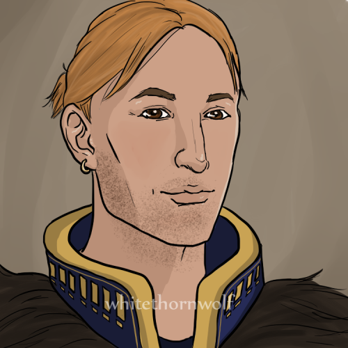 whitethornwolf:  Third! Awakening!Anders for Bell <3