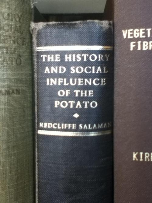The History and Social Influence of the POTATO…