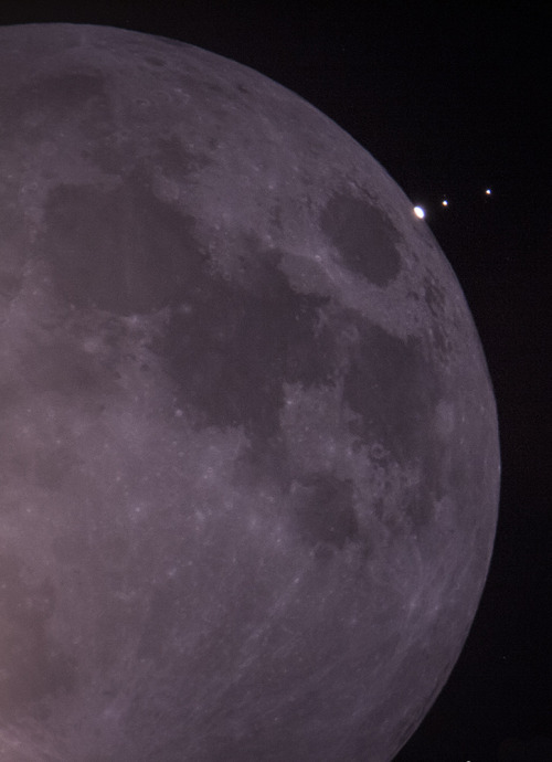 Conjunction and Occultation of Jupiter and the Crescent Moon  Jupiter as it begins its occultation behind the waning crescent. Io and Europa are trailing and soon disappeared behind our lone Moon. Mare Crisium, on the Moon's eastern quadrant, is the lunar surface feature nearest Jupiter.