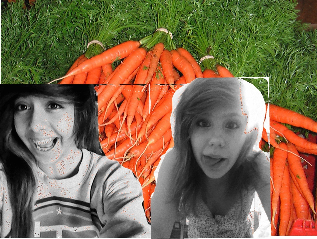 wwolvves:  guess what our favorite vegetable is !!!!!!!!  BOOTYLICIOUS CARROTS.