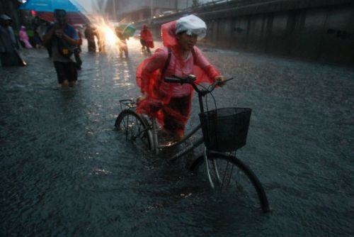 Record rain, floods hit Beijing AFP: Beijing was hit by the heaviest rain it has experienced in 61 years on Saturday. At least 10 people within the city were killed. State media says a policeman was electrocuted by a fallen power line during a rescue operation. The Xinhua news agency says others were killed in traffic accidents and roof collapses. Photo: A resident pushes her bicycle on a flooded street amid heavy rainfalls in Beijing. (China Daily via Reuters)