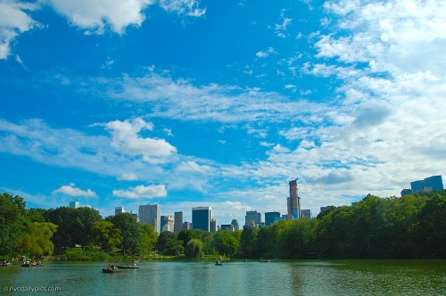nydaily:  Central Park, The Lake.  Where's Mr. Big and Carrie falling in?