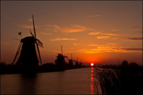 windmills along the river
