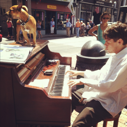 pianoxamerica:  Day 3:   P-town is a wild place. I met tons of street performers, locals, and travelers.   I found out all the tricks and trades of playing out here.   One guy I met is Will. A young dude living in P-town on his own. He found a 1950's electric Wurlitzer in an abandoned School and he brings it out to play on the streets. He pays his rent that way. He has only been playing for 3 years.  There's so much more I wish I could tell you. A lot of deep stuff he told me but I won't get into it. He's a good guy.  Saw this guy playing in union square a while ago, but only just realized what he's up to. I wish I was that brave! Darn me and my need for security.