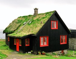 atimeofgifts:  Foliage covered green roof in Kirkjubøur, a photo from Faroe Islands. More