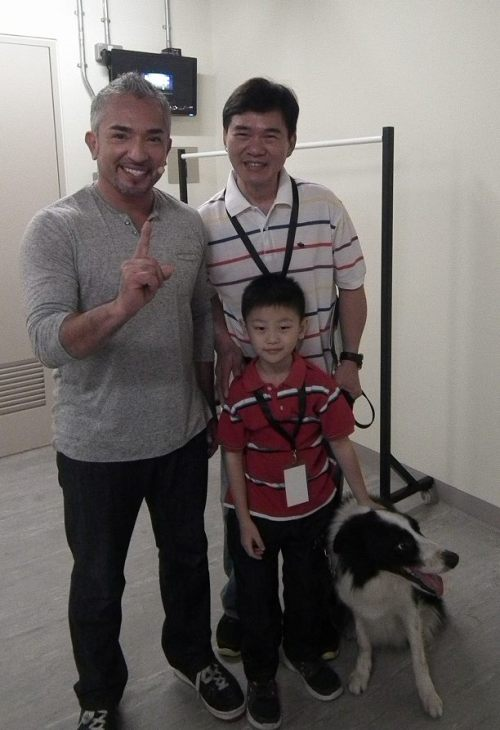 guest appearance at cesar millan live in singapore