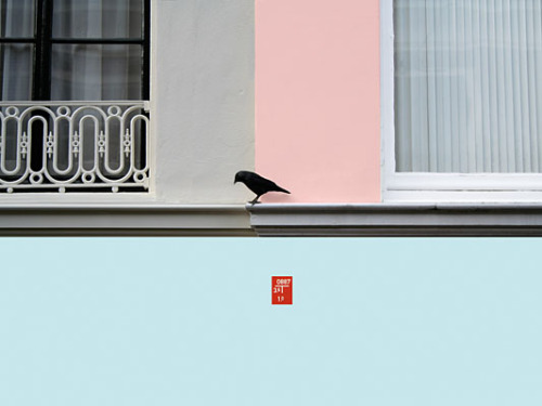 Untitled (Bird) by Cornelia Baltes. Source: tristetriste