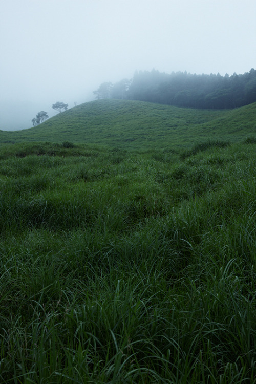 mydearmilo:  Morning of the Highland : 砥峰高原