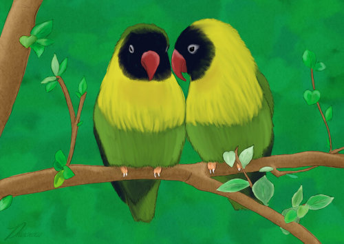 Lovebirds by ~Phoenixa86