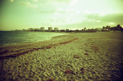 Pompano Beach on Flickr.Photo Credit: Matt Brasch Location: Pompano Beach, FL Date: April 11, 2012 Things Featured in Photo: Pompano Beach Camera: Superheadz Black Slim Devil Focal Length: 22 ISO: 200 Film Stock: Vista 200 AGFA Photo (2 years past expiration date)